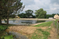 pond repair to fix leaking bank