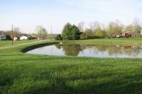 small pond repair