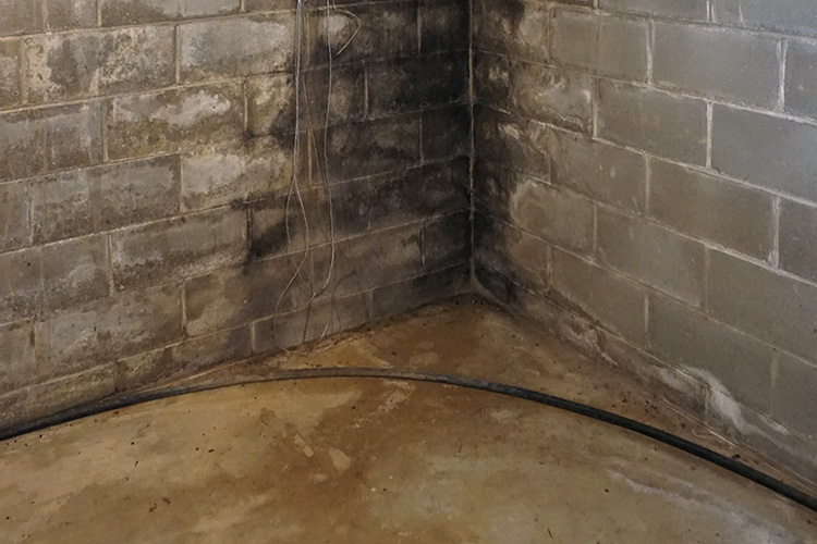 wet basement repair by Orr construction apple creek Ohio
