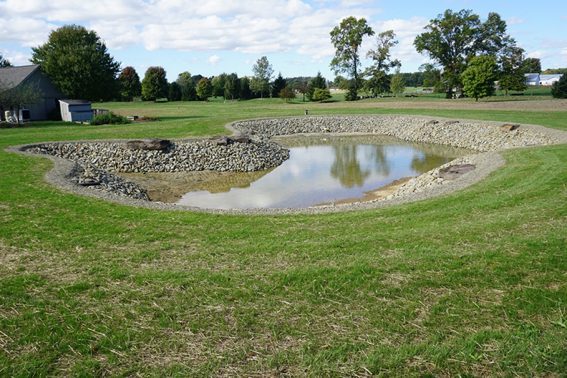 Second of two ponds created from separation of one larger, original pond