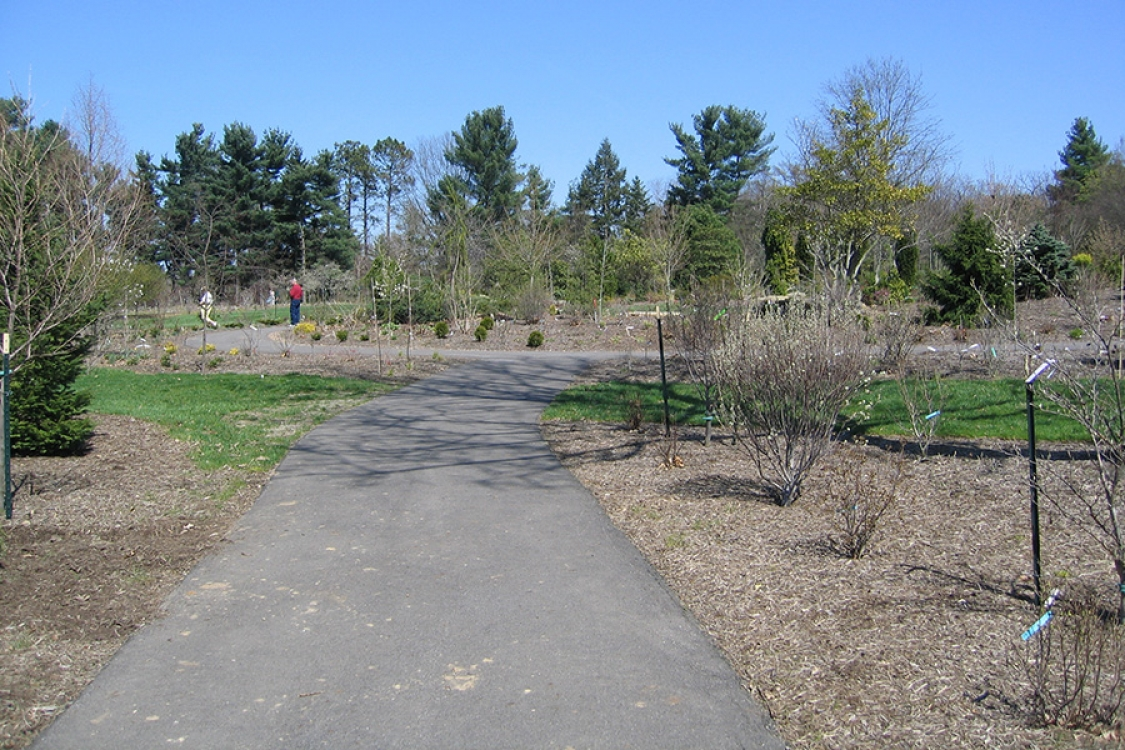 Walkway at Secrest Arboretum OARDC Wooster Oh by Orr Construction