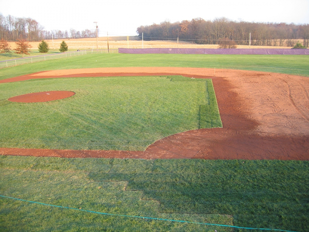 triways new field