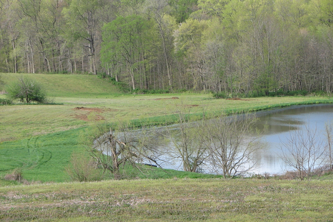 pond prior to reconstruction