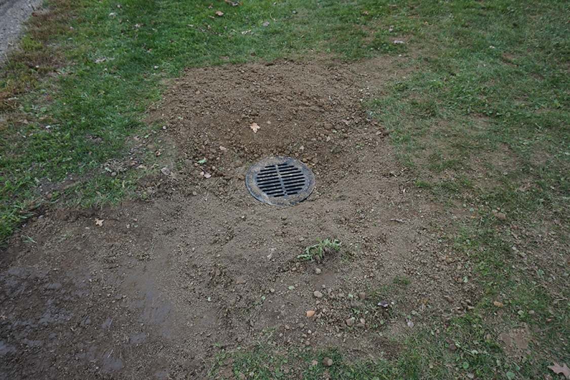 cleared storm sewer will allow basement drains to properly flow