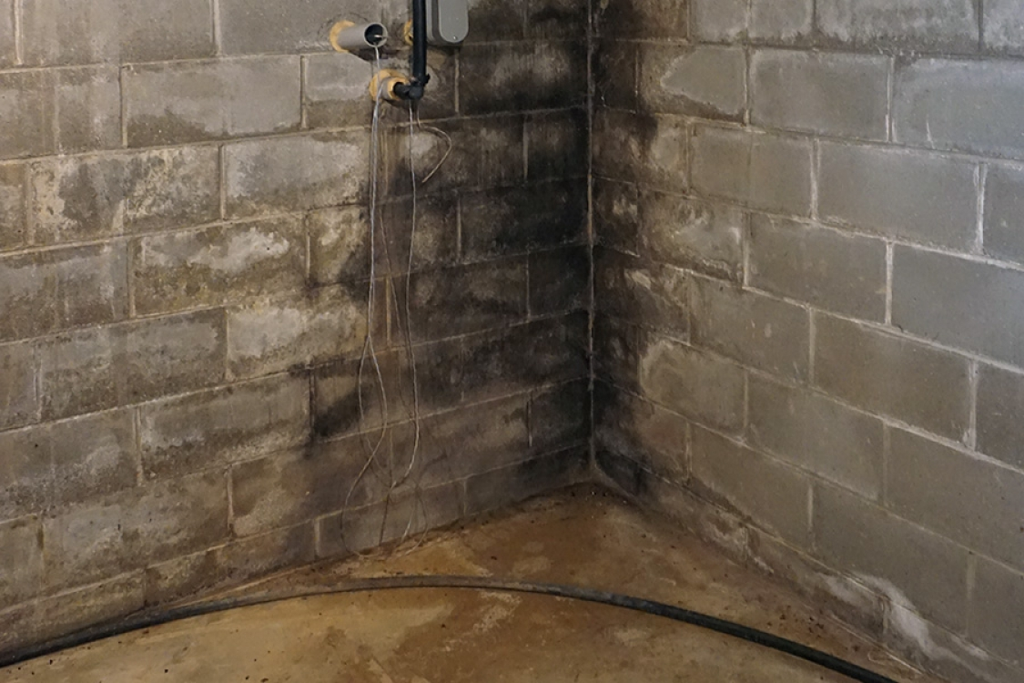 signs of a wet and leaking basement