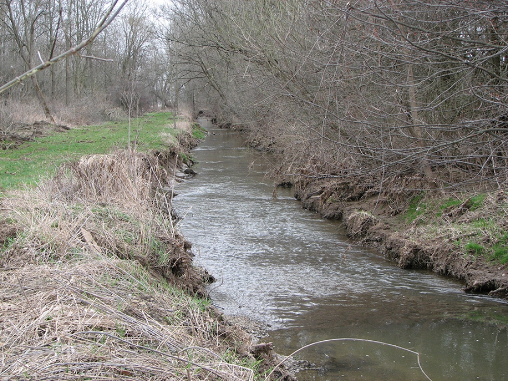 ditch prior to clearing